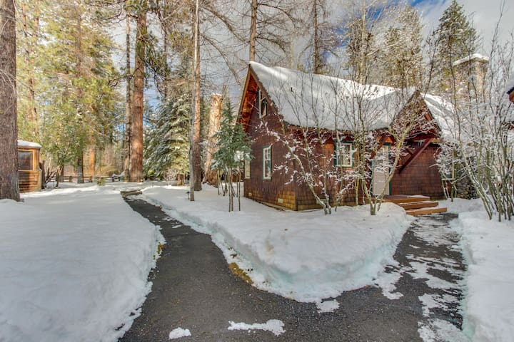 Modern, waterfront, luxury cabin w/ river views, fireplace, grill, & deck!