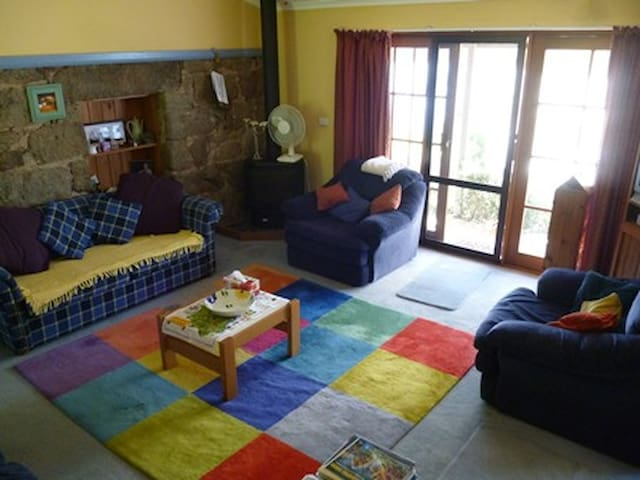The Main Living Room with Sofa Bed