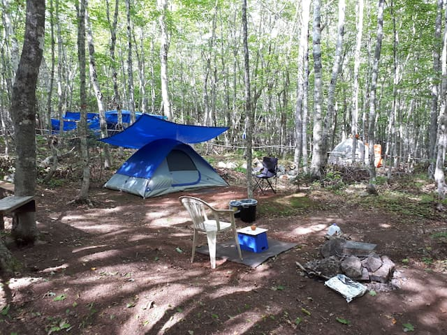Hassel-free Camping *Fully Equipped* Tent Rental