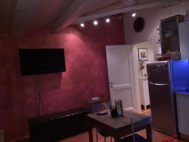 Affascinante mansarda - Reggello - Apartment