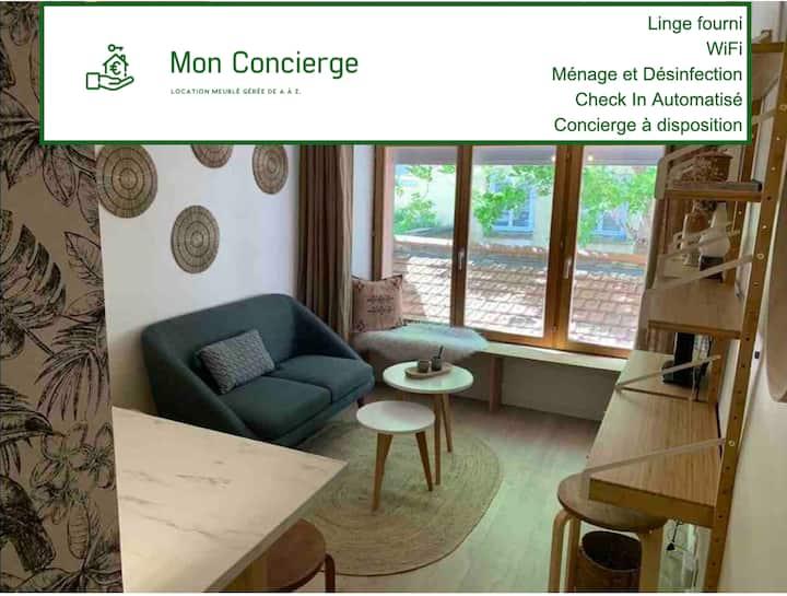 Nouvel appartement T2 de charme Croix Rousse