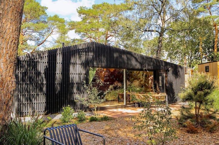Design Tiny House in 't hart van de Veluwe