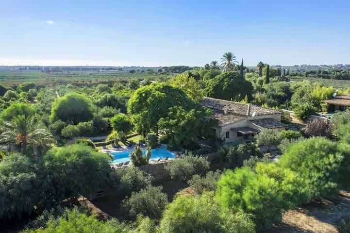Villa Suderi: 115283 - Selinunte