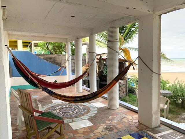 Dream Tree on the Beach | La Tortuga Inn
