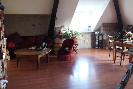 Chambre dans bel appartement F4 vue sur Pyrénées - Laloubère - Apartemen