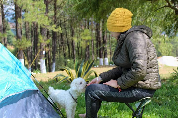"""Camping """"LA JOYA"""" *** (incluye casa de acampar)"""