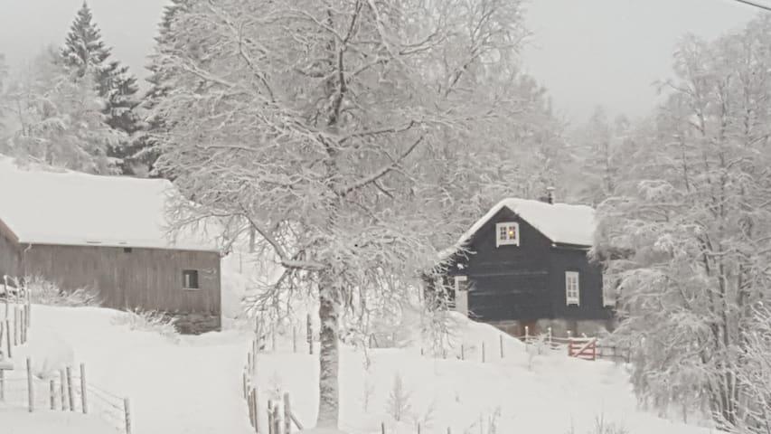Idyllic little farmhouse in central location