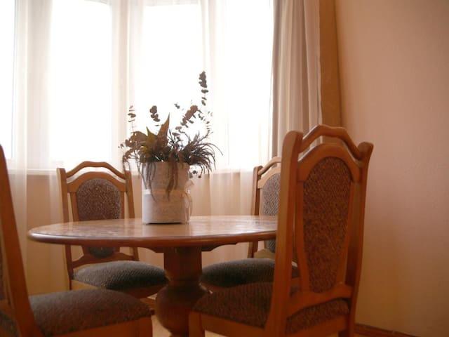 Apartment ''IRINA''