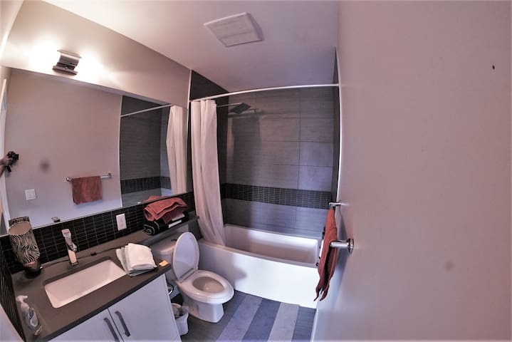 Private bathroom attached to main bedroom