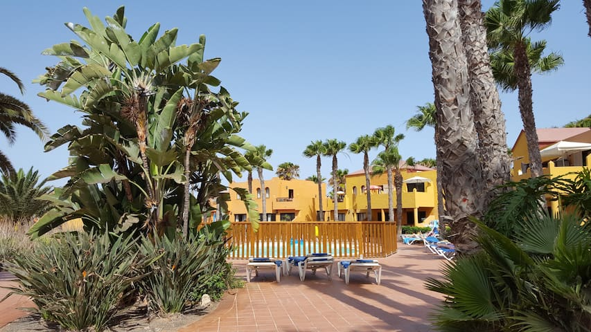 Nice apartments with 3 swimming pools + Wifi
