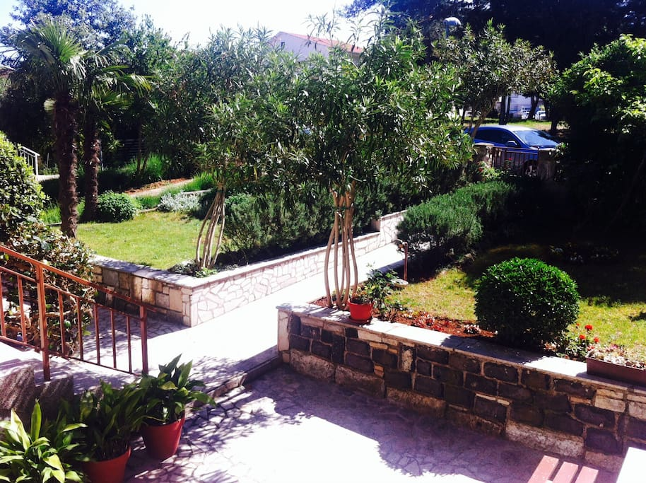 entrance to the house, path to Irena's app, big Mediterranean garden