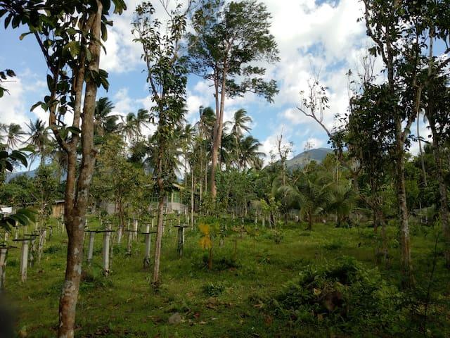 Sapphire farm house near Tayak Hill - Laguna - Lainnya