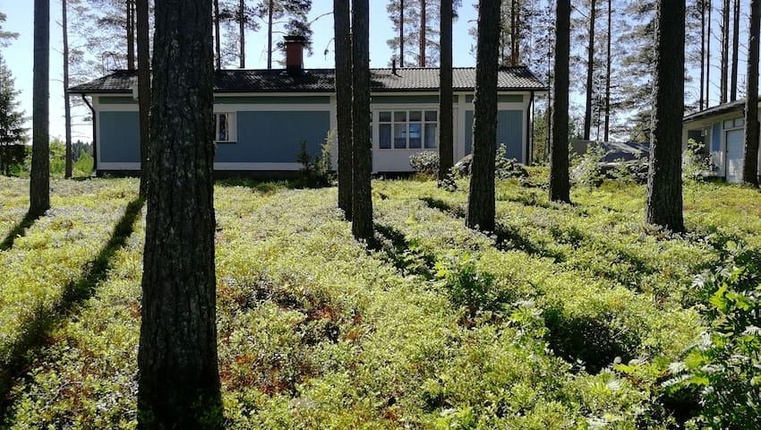 Grandmom's home by the lake Keitele