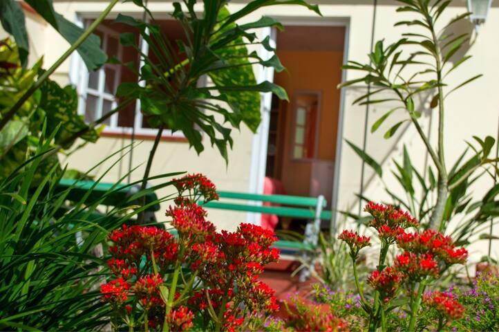 Casa Torralbo, Room Orquidea, agradable y cómodo