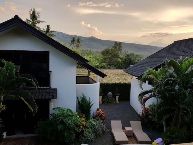 Oaza Bali Bungalows III - Lovina -