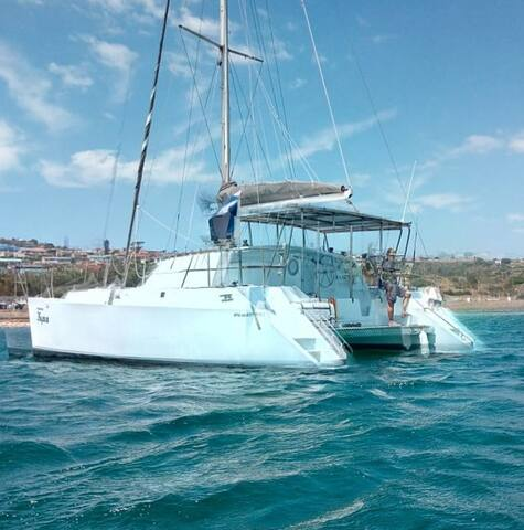 MOSSEL BAY SAILING TRIPS!! ON OUR 40 ft Catamaran!