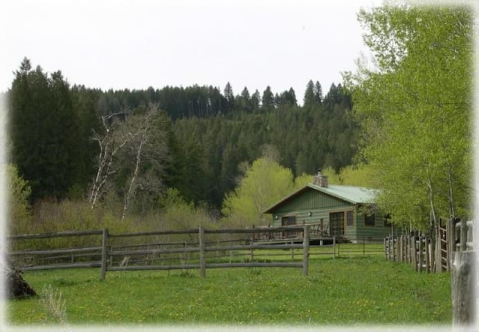 Brackett Creek Cabin - Over 100 Acres Bordering National Forest