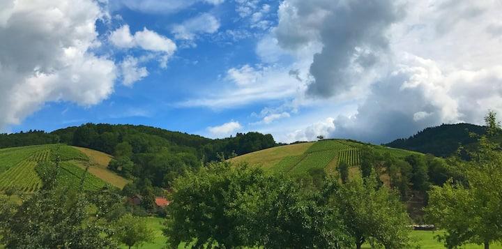 Charmante Künstlerwohnung am Weinberg bei Freiburg
