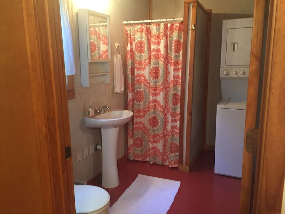 Bathroom view w/shower and small washer & dryer