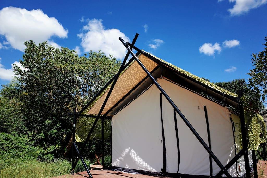 漂亮的帐篷小屋