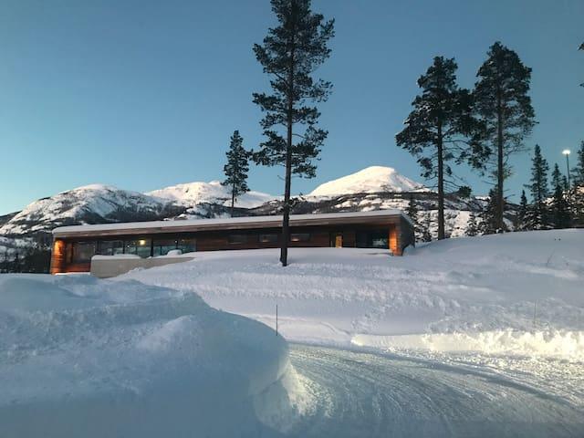 Modern New Cabin Hemsedal - The Scandinavian alps