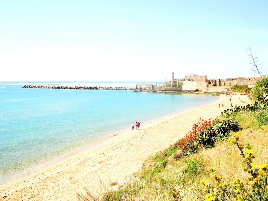 Panoramica della spiaggia della Loggia a soli 50 mt da casa