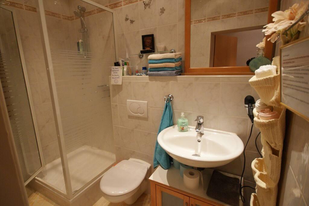 das Bad mit Dusche, Bathroom with shower