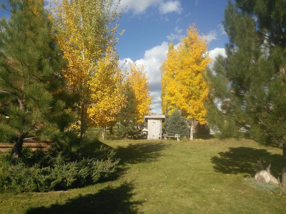 This view shows the fall colors at our place