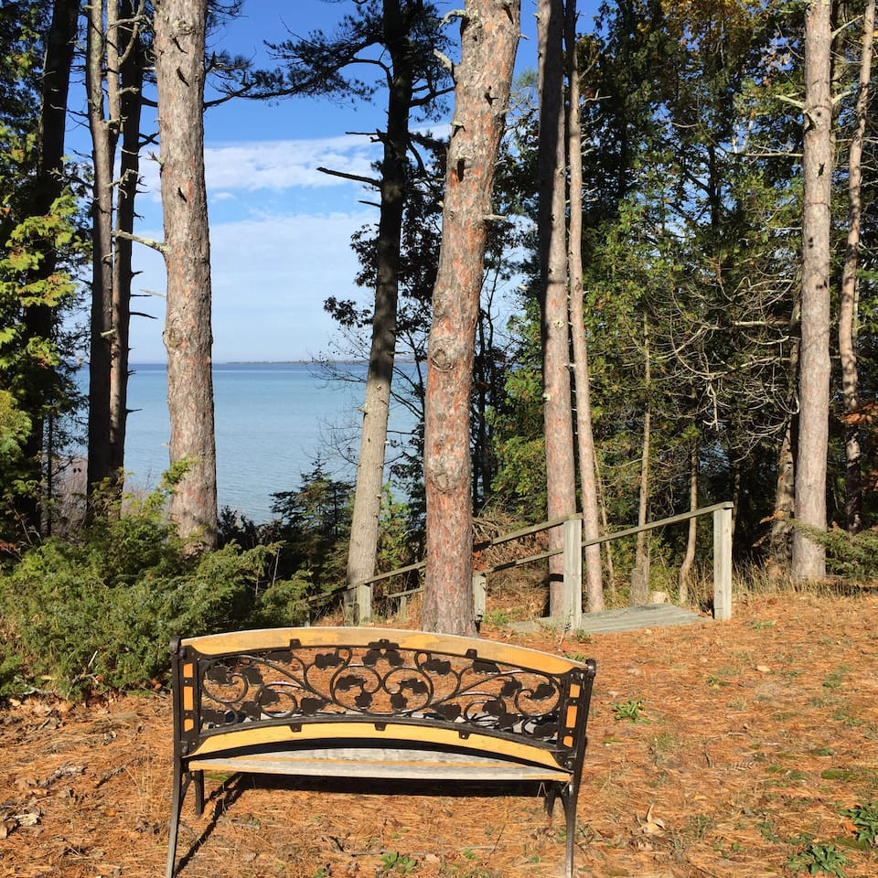 Overlooking Lake Michigan from yard.