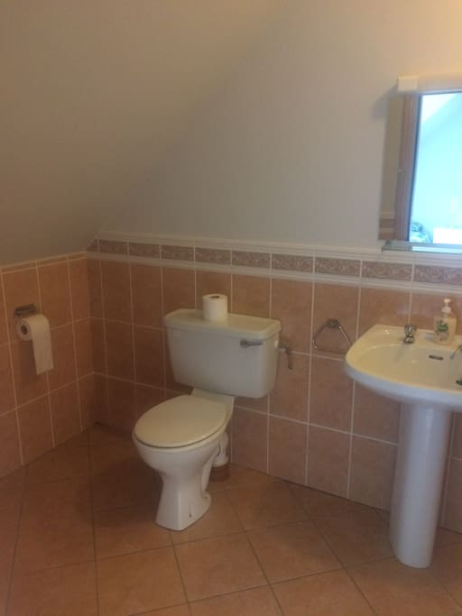 En suite bathroom with electric shower