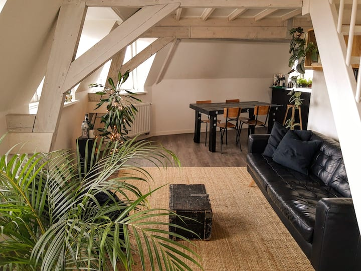 Charming apartment in the heart of historic Delft