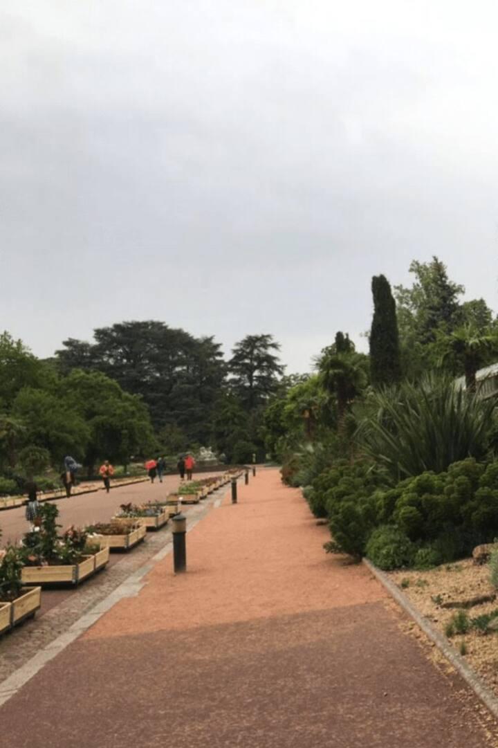 Le Parc de la Tête d'Or