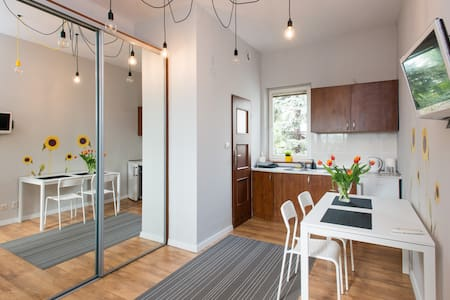 Sunflower Studio - great place, business ready