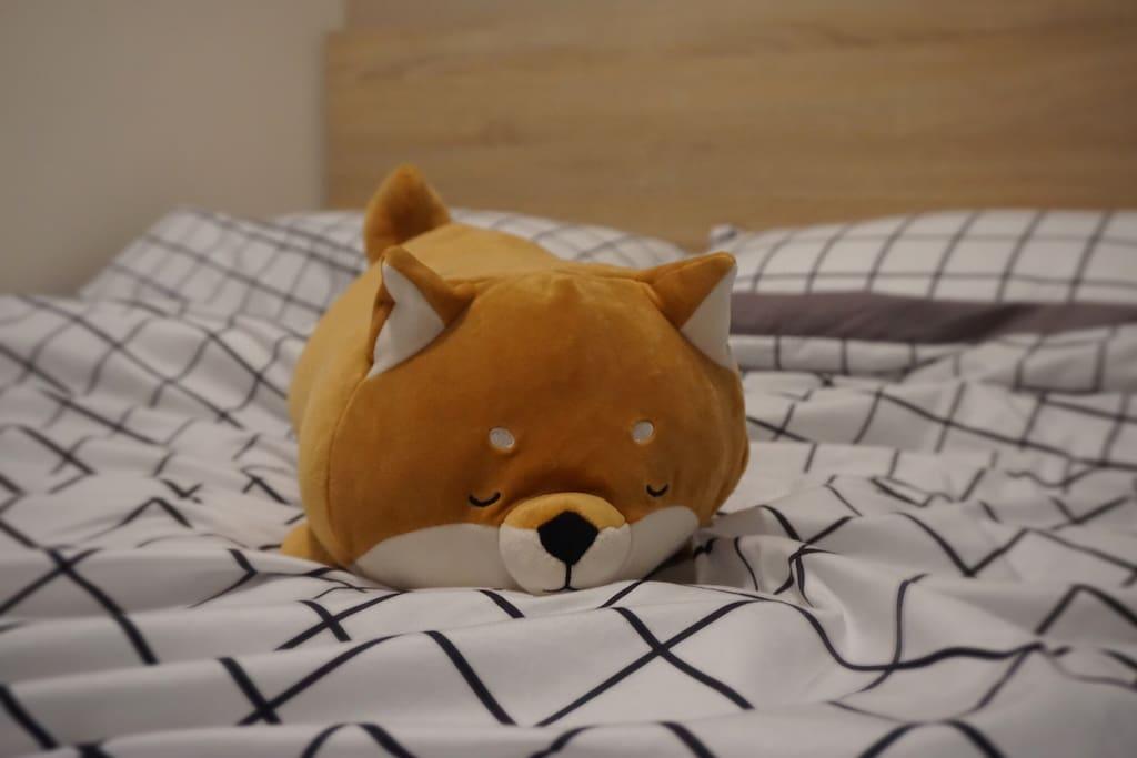 小黄又在睡了,小白在隔壁的隔壁,小粉还没回家,我们都期待你们来玩噢