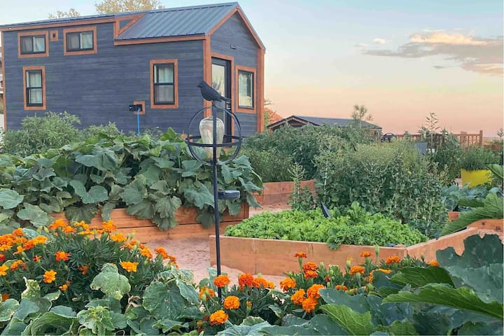 Tiny Home with Mountain View in Backyard Garden