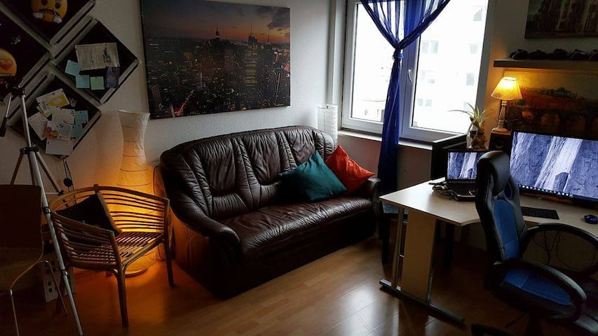 Sofa at Shared room: Sunny, tidy, big and nice - Koblenz - Apartament