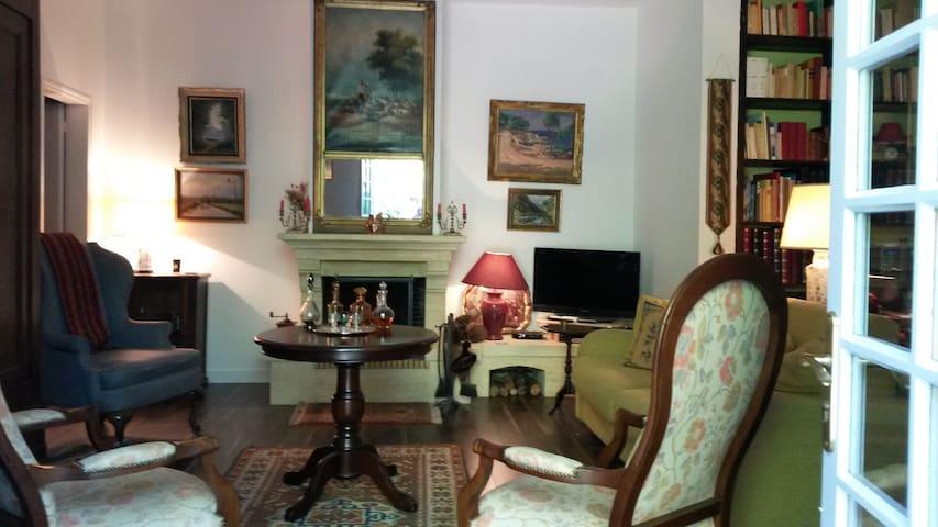 Salon séjour avec cheminée et canapé lit de 1,40 confortable