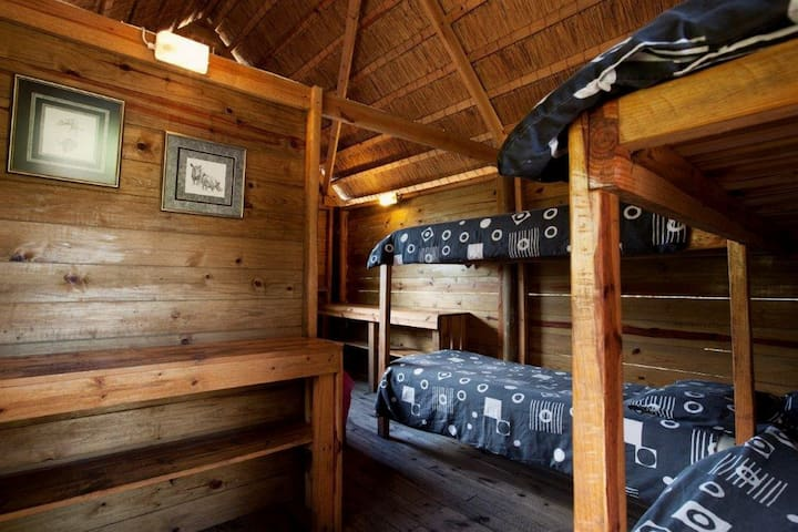 Rustic wooden one room cabin with partition inbetween separating queen size bed from 2 double bunks