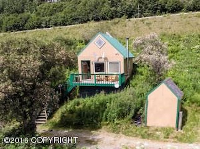 Charming Cabin Up the Hill - Homer - Huis