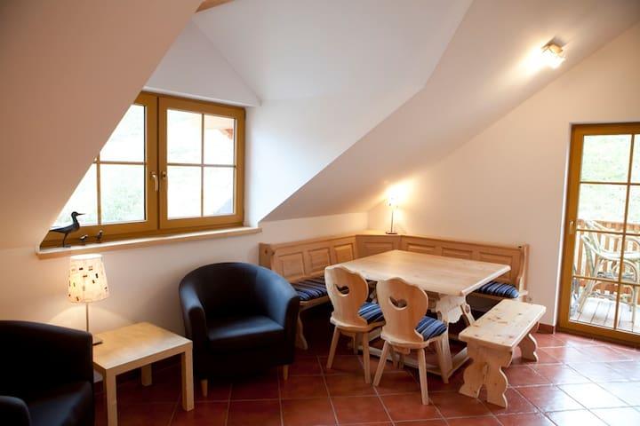 Aan de piste gelegen van Dachstein-West - Steuer - Apartment