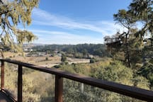 View from the back deck (pic1)