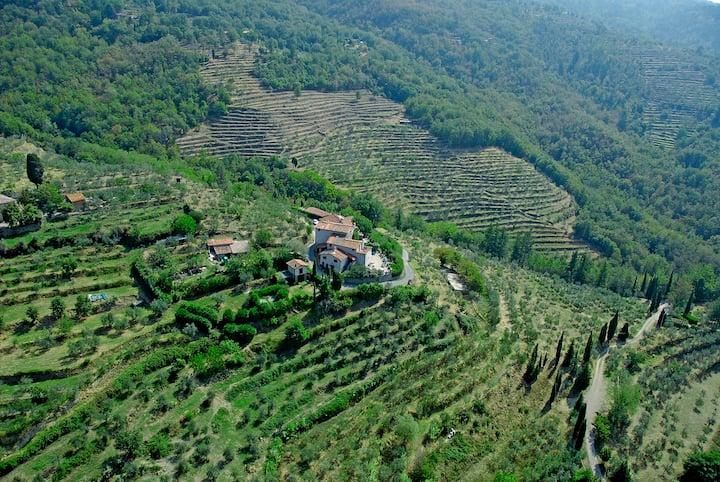Vacanze nel Borgo