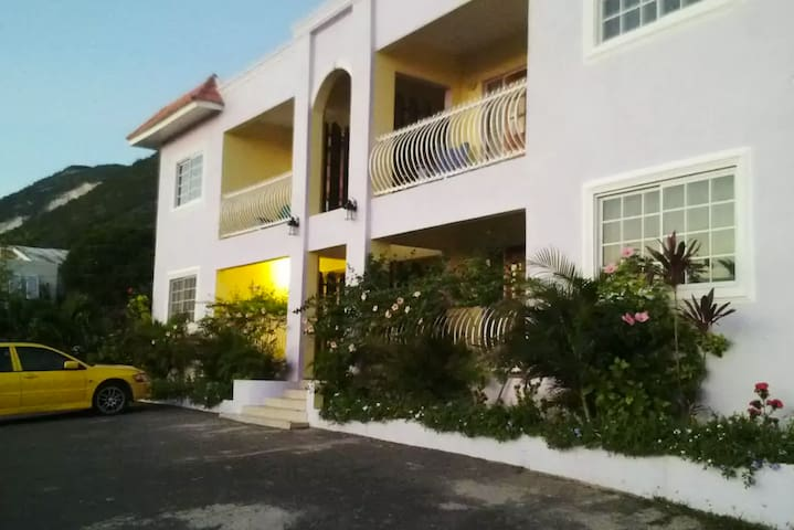 Beautiful OceanView Villa - Kingston