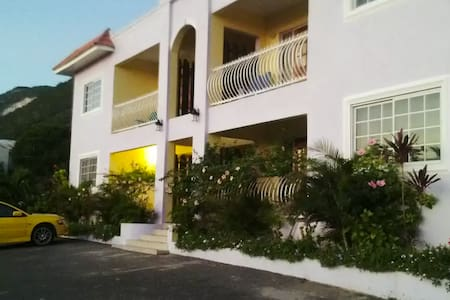 Beautiful OceanView Villa + Driver - Kingston - Villa