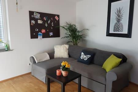 Modern & Charming 60sqm Apartment In Mondsee - Mondsee - Wohnung