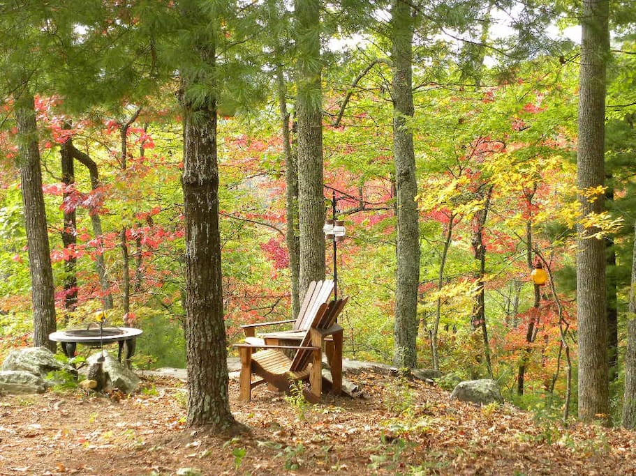 Lovely Autumn colors on your own private mountain top