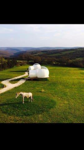 Logements atypique en bulle - Cahors