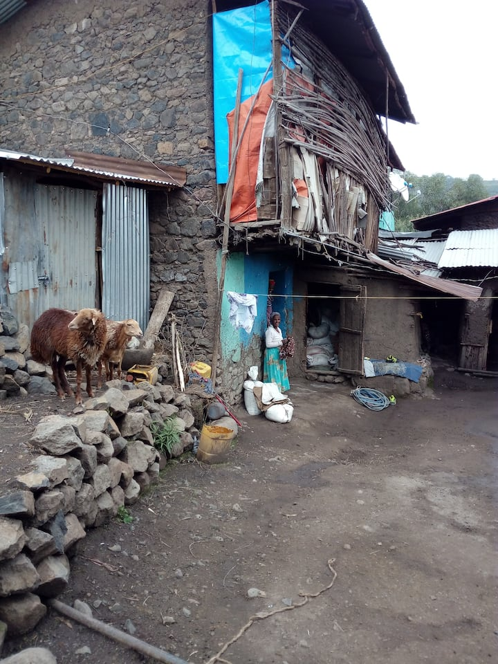 Farm Stay Lalibela