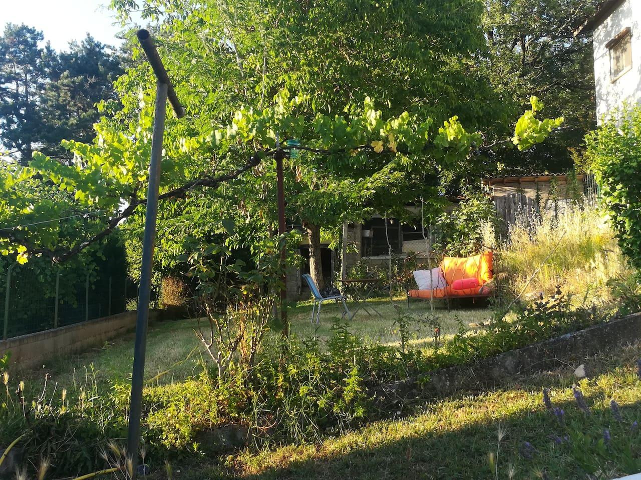 Soleil couchant sur le jardin