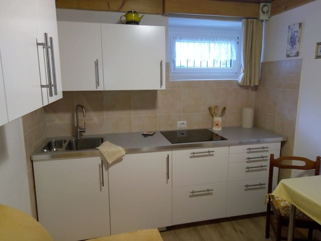 Apartment in Predazzo